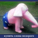 слон купить недорого