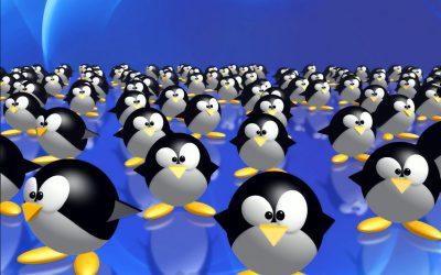 клоны пингвины